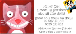 Kylies Cat Grooming Services also all size dogs!