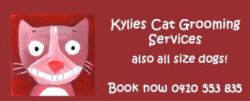 Kylies Cat Grooming Services
